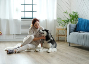 Woman with husky